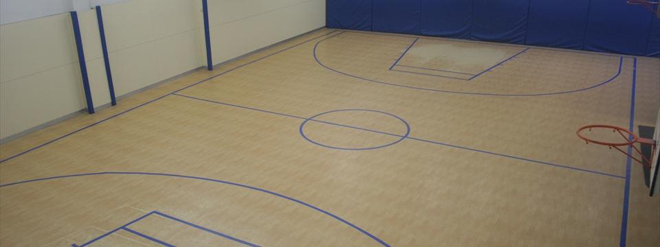 Pabelló de bàsquet